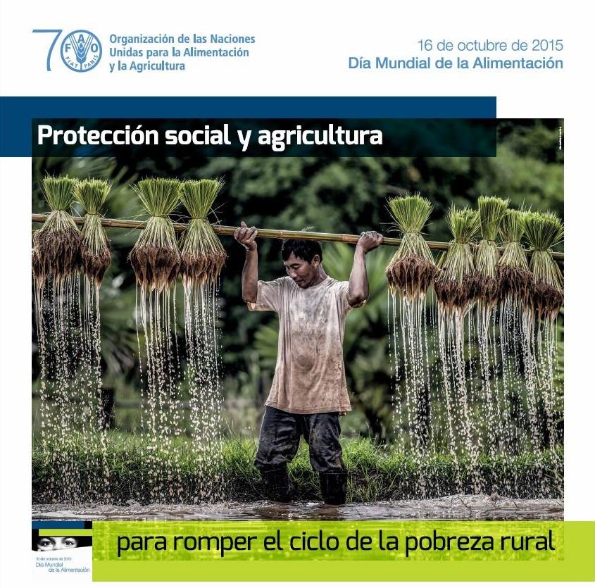 cartell-dia-mundial-alimentacio-2015