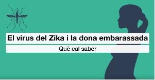 zika_embar
