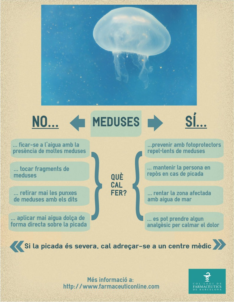 meduses-infografia
