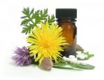 Terapèutica homeopàtica per a farmacèutics