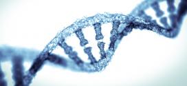 Introducció a l'epigenètica i aplicabilitat en la medicina personalitzada