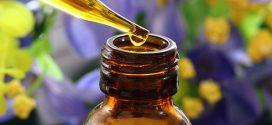 Fitoteràpia: Usos i aplicacions dels olis essencials en l'embaràs i la lactància