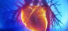 Novetats en les guies terapèutiques sobre els anticoagulants d'acció directa (ACOD)
