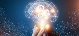 1 hora amb Steven Poelmans: El cervell com a eina de lideratge [Fòrum MGOF]