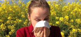 La rinitis al·lèrgica, una de les al·lèrgies més comunes