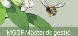 Com serà la XV edició del MGOF?