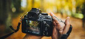 Properes activitats de la secció de fotografia del COFB