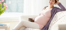 Actualització en tècniques de reproducció assistida. Una demanda creixent d'informació a atendre