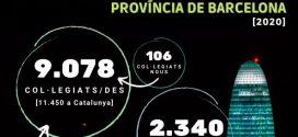La professió farmacèutica a la província de Barcelona l'any 2020